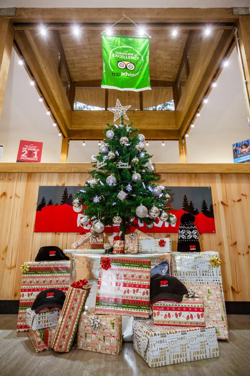 Zip World Fforest Christmas Tree